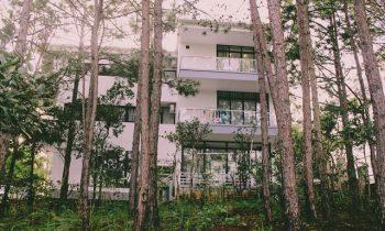 Top 3 homestay đẹp xuất sắc để sống ảo gần Hồ Tuyền Lâm Đà Lạt